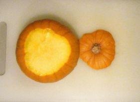 Ed - pumpkin